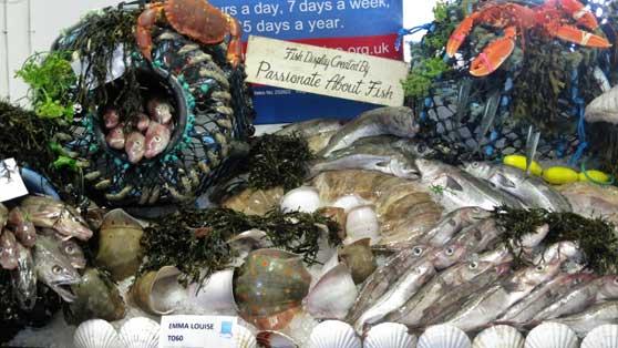 Fish Display | Newlyn Fish festival | Cornwall | Cornish Produce